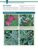 Trees, Shrubs & Hedges for Your Home: Secrets for
