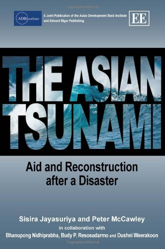 The Asian Tsunami: Aid and Reconstruction After a Disaster (The Great Indian Ocean Tsunami Of 2004)