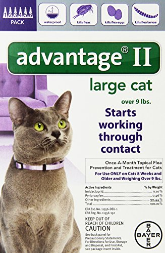 Bayer Advantage II Large Cat Over 9-Pound 6-Month