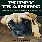 Puppy Training: 10 Tips to Train Your Puppy from 8 Weeks On! |  MAV4LIFE