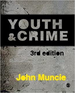 Dissertation questions on youth crime