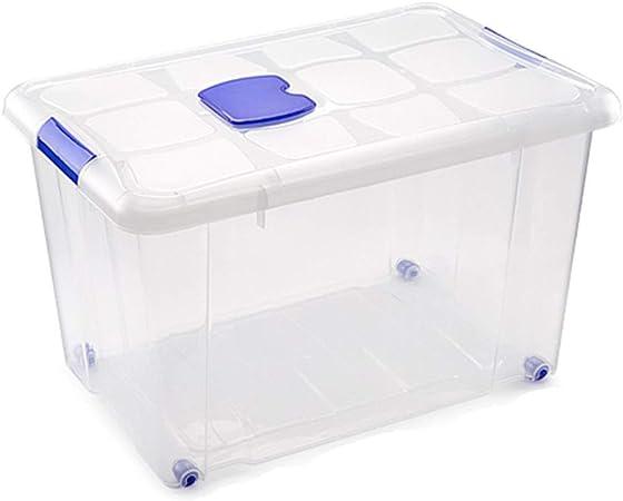 Plastic Forte - Caja de ordenación n 4 55 litros: Amazon.es: Hogar