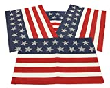 Kay Dee Star Spangled America Flag Place Mats Set of 4 13x19 inches