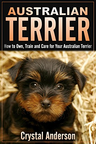 Australian Terrier: How to Own, Train and Care for Your Australian Terrier