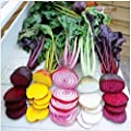 100pcs Seeds Beetroot Mixed Blood Yellow White Heirloom Home Garden Vegetables