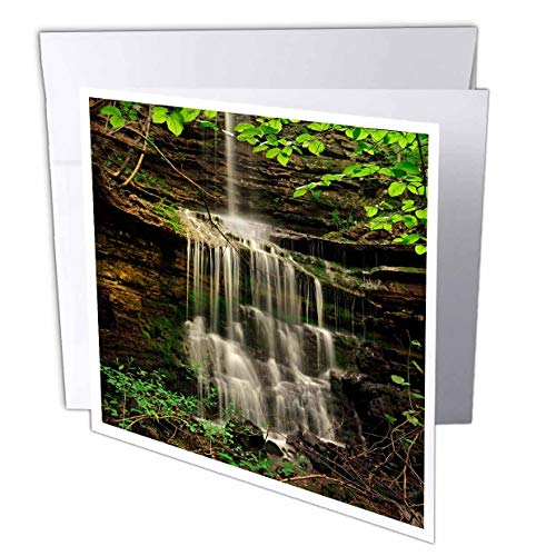 (3dRose Danita Delimont - Waterfalls - Pearly Creek Falls Near Buffalo River Trail, Arkansas - 12 Greeting Cards with envelopes (gc_314573_2) )