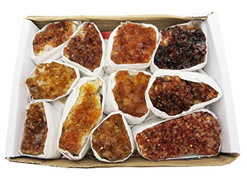 Rock Paradise Citrine Cluster Flat Box - Box Size 7.5x5x2 - Brazilian Crystals - Crystal Collection - Reiki Crystals Exclusive COA (Citrine)