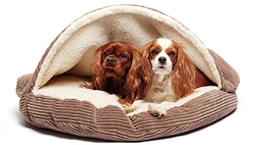 Precious Tails Cozy Corduroy Round Cave 25inch Dog Bed in Coffee For Sale