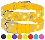 """CollarDirect Reflective Dog Collar 8 Colors, Leather Safety Collars for Dogs Glow in The Dark Puppy Small Medium Large, Comfortable and Durable (Neck Fit 8""""-9"""", Yellow)"""
