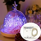 SINOLLC 10ft 30 LEDs Purple Starry Starry Light String Light 3xAA Battery Powered Flexible Indoor String Lights Wedding Party Light Picture