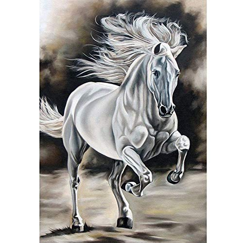 (5D Full Drill Diamond Painting Kit, DIY Diamond Rhinestone Painting Kits for Adults Embroidery Arts Home Decor Pentium White Horse 11.8x15.7in 1 by Westsson)