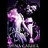 Faery Dust: BBW Paranormal Romance