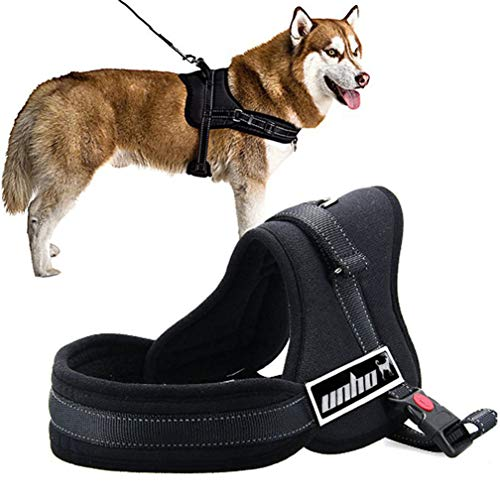 LOSYPET Pet Supplies Dog Harnesses No Pull with Double Buckle for All Breeds, Heavy Duty Breathable Nylon Safety Pet Harness, Adjustable Soft Vest for Large Dogs Walking Traveling Training