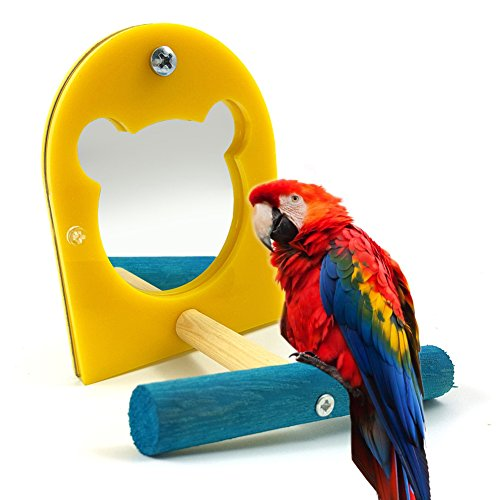 Bird Mirror Toy for Parrot Budgie Parakeet Cockatiels Conure Finch Lovebird African Grey Macaw Amazon Cockatoo Cage Perches Paw Grinding Wood Standing Bar Rack Birdcage Mirror
