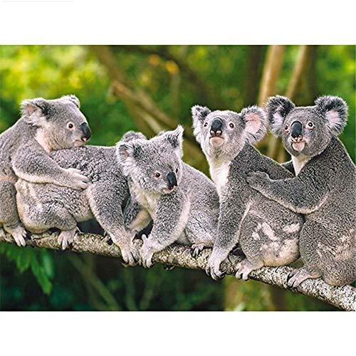 Diy 5D Diamond Painting by Number Kit, Australian Koala Crystal Rhinestone Arts Craft Canvas Wall - Map Design Australian