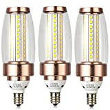 WYBAN E12 LED Bulb Candlestick LED Light Bulb, 6W Super Bright Daylight White LED 6000K 60W Equivalent LED Chandelier Light Bulb, AC 120V 60 HZ, Energy-Saving (Pack of 3) (Gold)
