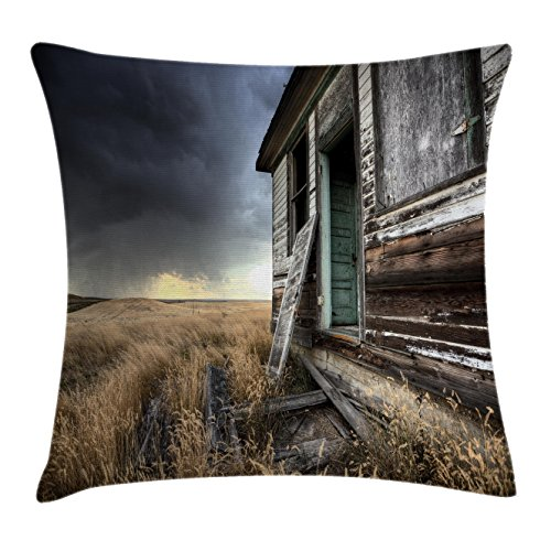 Rustic Home Decor Throw Pillow Cushion Cover by Ambesonne, Dated Wooden Farmhouse in Field in Cloudy Thunderstorm Day in Canada Photo, Decorative Square Accent Pillow Case, 20 X 20 Inches, Multi (Bench Canada Bath)