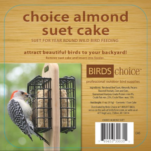 Almond Suet Cake - 7