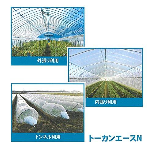 【2本】 0.05mm厚 230cm幅 100m トーカンエースN 農PO 透明 シングル巻 東罐興産 カ施 代不 B079TMJLZF