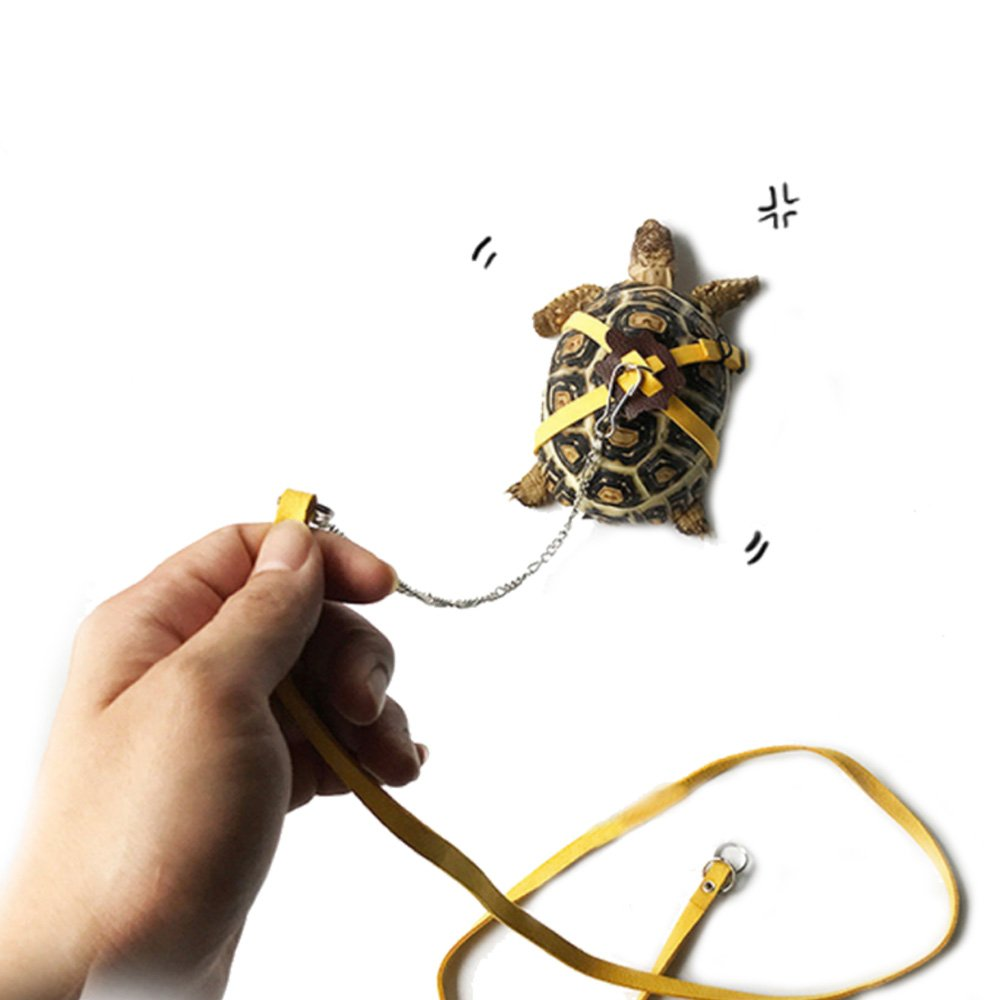 ASOCEA Pet Leather Harness Strap Walking Control Rope Great for Tortoise/Turtle Reptile Yellow