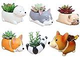 6 PCS Set Cute Cartoon Animal Corgi Husky Labrador Pug Panda Shaped Succulent Cactus Flower Pot/Plant Pots/Planter/Container for Home Garden Office Desktop Decoration (Plants Not Included)
