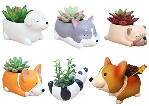6 PCS Set Cute Cartoon Animal Corgi Husky Labrador Pug Panda Shaped Succulent Cactus Flower Pot/Plant Pots/Planter/Container for Home Garden Office Desktop Decoration (Plants Not Included) by Cuteforyou