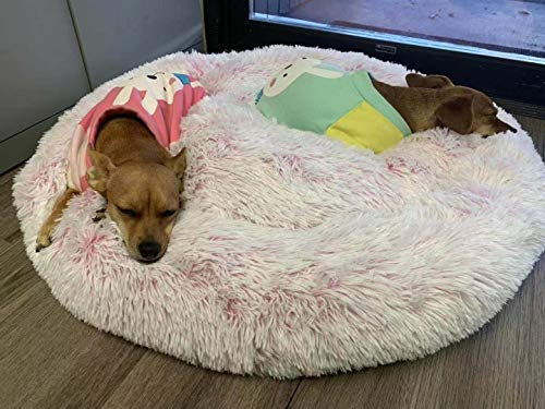 Friends Forever Premium Donut Bolster Orthopedic Dog Bed for Puppy to Medium Dogs & Cat, Medium Pink by Friends Forever (Image #6)