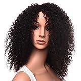Silike Afro Kinky Curly Wig Kanenkalon Fiber Jerry Curl Wigs For Black Women