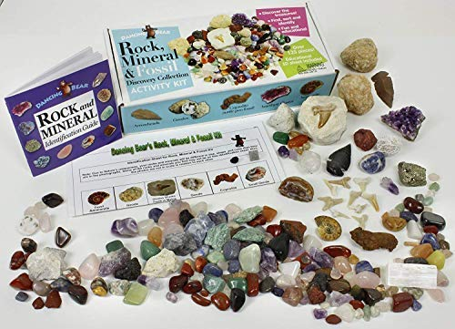 Dancing Bear Rock, Mineral & Fossil Collection Activity Kit with ID Sheet & Rock Book, Plus Ammonite, Shark's Tooth in Matrix, Fossilized Poo, 2 Geodes & Arrowheads,(Over 125 pcs and NO Gravel) Brand