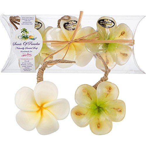 "Plumeria Scented Flower Soaps– ""Scents Of Paradise"" Handmade Natural Soaps – 3 Piece Gift Set – With Coconut Oils & Fruit & Flower Fragrances– Paraben & Phthalate Free By Heels Above (In Montclair May)"