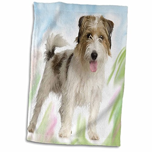 3dRose Dogs Jack Russell Terrier - Jack Russell Terrier - 15x22 Hand Towel (twl_4237_1) - Russell Golf Towel