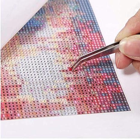 Diamond Mosaic Diy Diamond Bordado Caballo Con Pelo Largo Pasta Cuadrada Cuadrada Completa Kit De Punto De Cruz Pintura Diy Diamond 30x40 cm: Amazon.es: ...