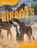 img - for Giraffes (QED Animal Lives) book / textbook / text book
