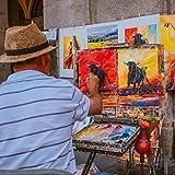 PHOENIX Artist Painting Canvas Panels - 8x10 Inch