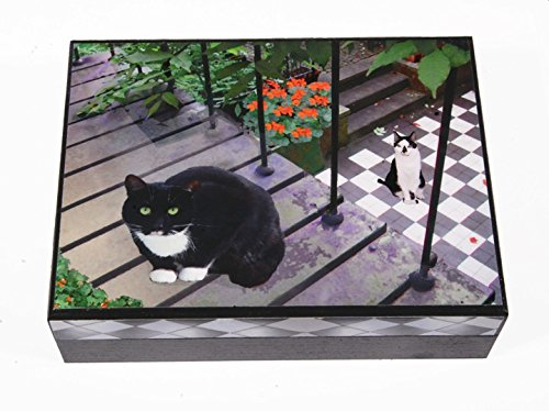 Tuxedo Cat Keepsake / Memory Box, Large (6 1/4