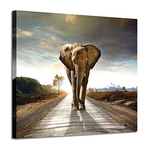 Savannah Poster Bed - Running Elephant Wall Art Print: Wild Animal Graphic Artwork Painting on Wrapped Canvas for Bed Room(16''x12'')