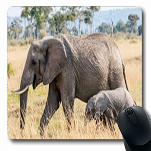 Pandarllin Mousepads Game Elephants Safari Park Wildlife Kenya Africa Nature Endangered Oblong Shape 7.9 x 9.5 Inches Oblong Gaming Mouse Pad Non-Slip Rubber ()