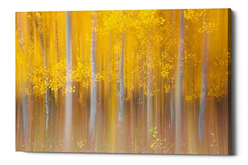 Epic Graffiti Changing Seasons by Darren White Giclee Canvas Wall Art, 40'' x 60'' by Epic Graffiti