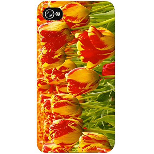 Coque Apple Iphone 4-4s - Champ de tulipes
