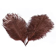 Kolight 20pcs Natural Ostrich Feathers for DIY Home Wedding Party Office Decoration (10''~12''(25~30cm), Coffee)