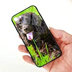 Irish Water Spaniel iPhone 7 /iPhone 8 Compatible Tempered Glass Phone Case Fashion Hard Glass Back Cover 6