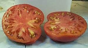 Tomato Garden Collection, Heirloom,Seeds, 6 Top Varieties, Country Creek Acres