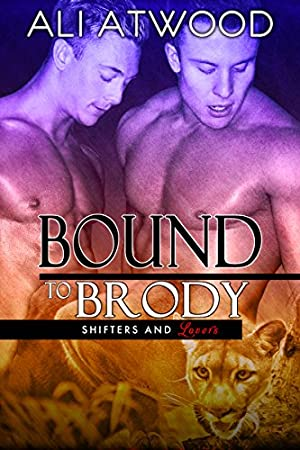 book cover of Bound to Brody