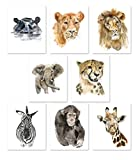 Nursery Wall Art Decor - Set of 8 Animal Art Prints Posters//Safari Watercolor Theme//Baby Room//Elephant Lion Zebra Giraffe Hippo Lioness Leopard Monkey (8x10)
