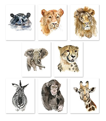 Nursery Wall Art Decor - Set of 8 Animal Art Prints Posters//Safari Watercolor Theme//Baby Room//Elephant Lion Zebra Giraffe Hippo Lioness Leopard Monkey (8x10) by AntonyPrint