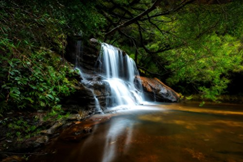 Wenworth Falls Blue Mountains National Park New South Wales Photo Art Print Poster 18x12 inch