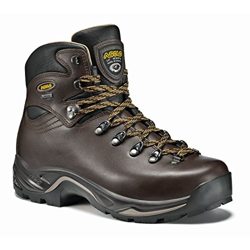 - Asolo TPS 520 GV Evo Hiking Boot - Men's - 10.5 - Chestnut