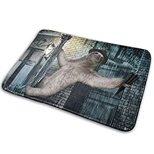 Amazon Com Sfdhfgh Non Slip Doormat Door Floormat Sloth