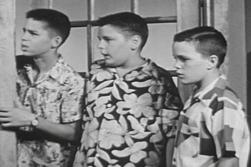 Vintage Pranks for Kids: Other People's Property DVD (Easy 50s Hairstyles)
