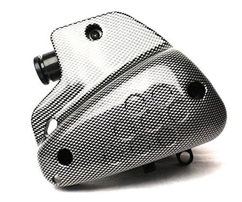 Buxy SV50 Limbo Squab Elyseo Luftfilter Box Carbon Peugeot Speedfight TKR
